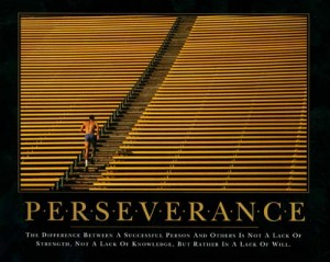 perseverence is the key to success Life can be hard things may not always be as easy as i think or wish they would be my life-long intellectual and physical aspirations cannot be obtained in one day.